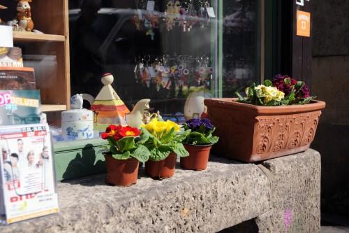 Schöner unsere Schaufenster: Louisenstraße